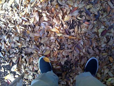 2009.11.21.jpg