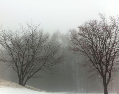 2012.3.17~2.jpg