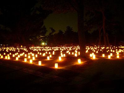 燈花会3.jpg